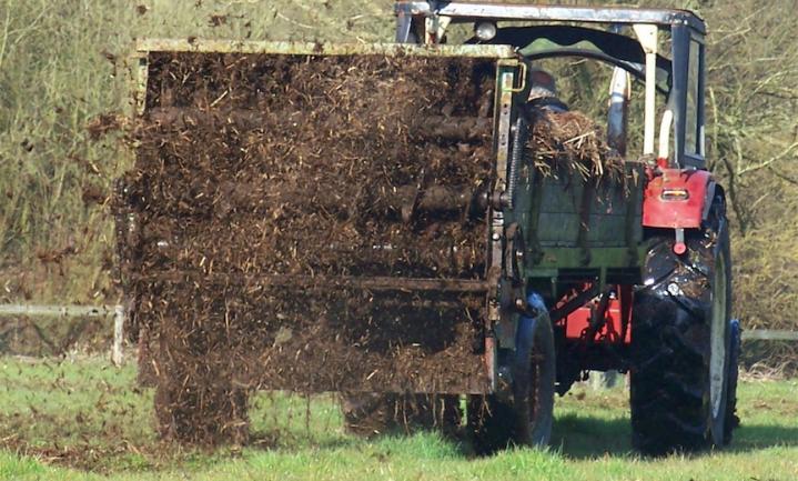 Mesthandelaren kiezen voor koeienpoep