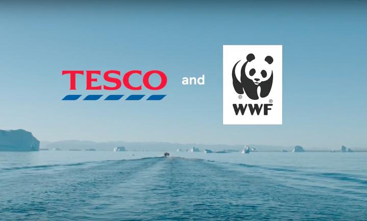 Betaalbaarheid voorop in het duurzame boodschappenmandje van Tesco en WWF