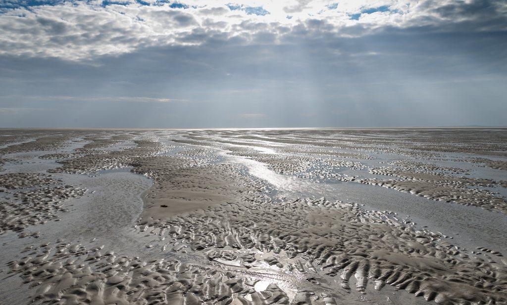 Wereldnatuurfonds fantaseerde er op los in rapport over Noordzee