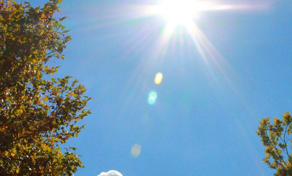 Verjaagt de lentezon het virus?