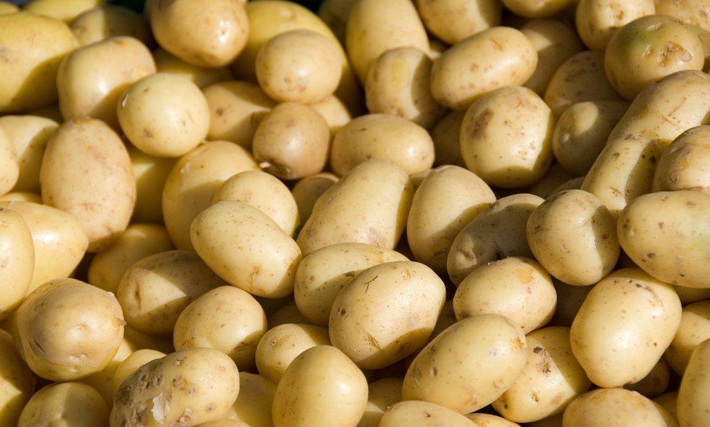 Australische kok maakt zuivel van aardappel