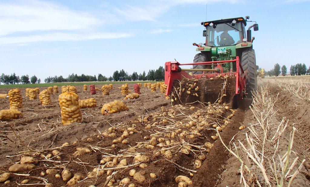 De bodemparadox: het gaat goed met de bodem zolang je alleen naar de gewasopbrengst kijkt