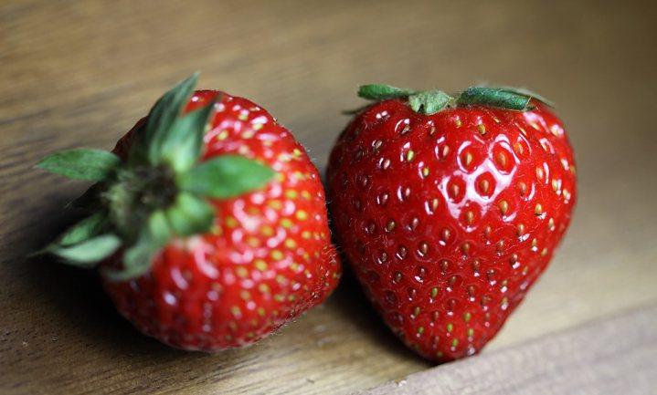 Verticale dure aardbeien