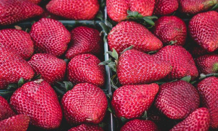 'Aardbeien giftig en toch PlanetProof-keurmerk'