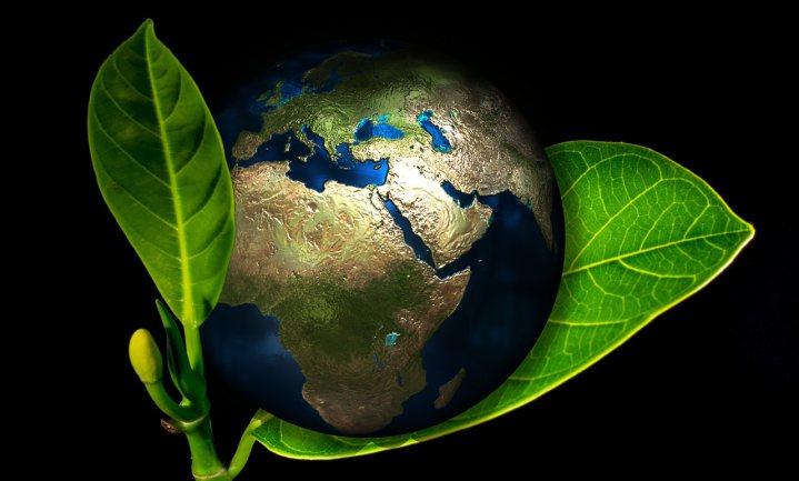 Verdere groei marktaandeel 'duurzame' producten