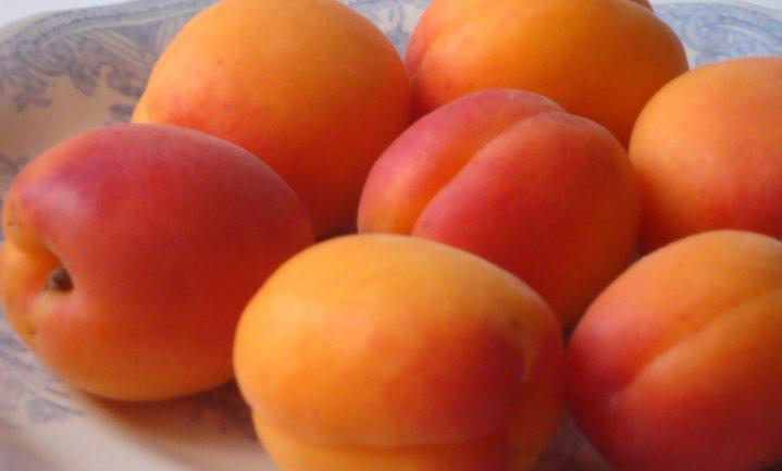 Gevulde abrikozentaart met appelgelei
