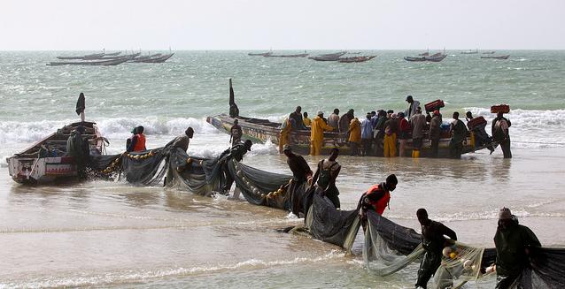 VN-rapporteur bepleit recht op vis