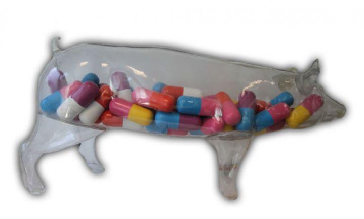 Nederland voorbeeld 'Good Practice' in antibioticareductie dierhouderij