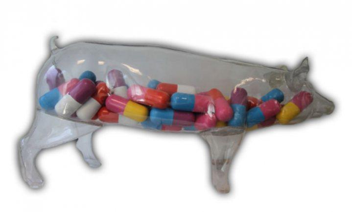 Nederland organiseert wereldwijde conferentie tegen antibioticaresistentie