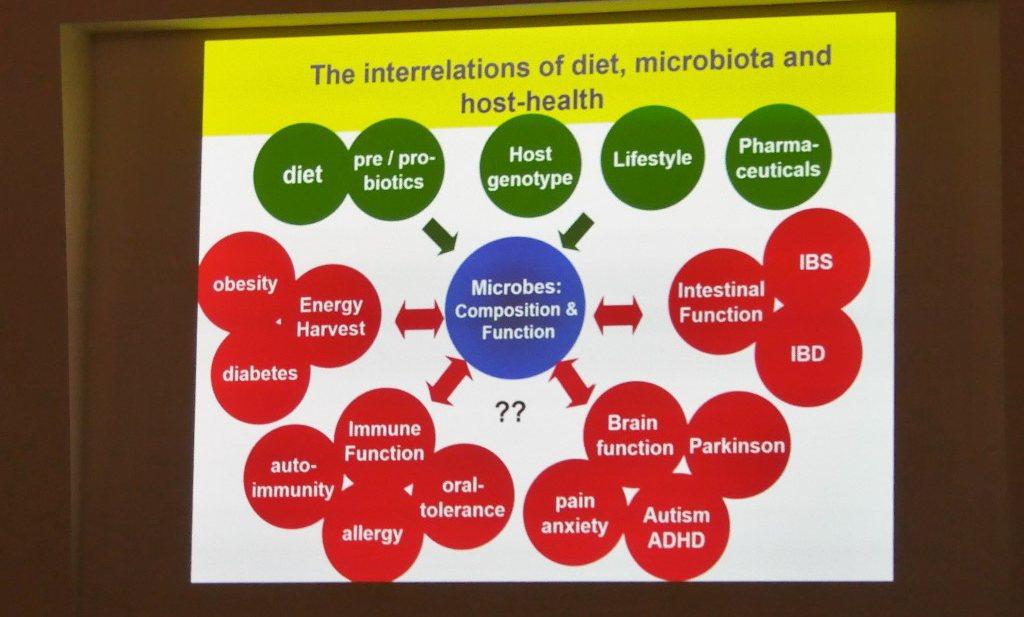 Behandeling met darmbacteriën, nog een lange weg te gaan