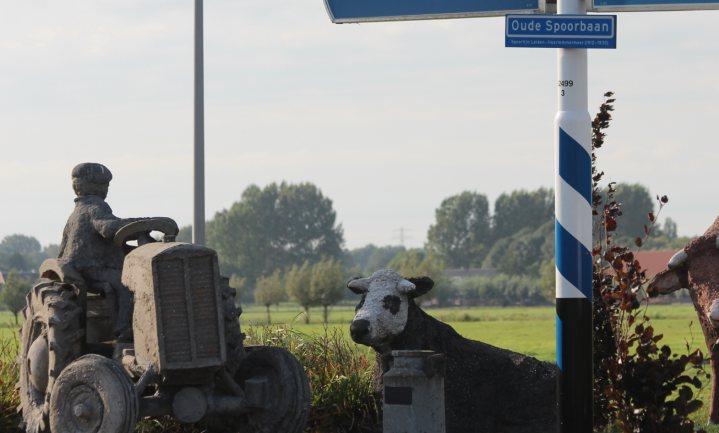 Opnieuw aandacht voor zeldzame koeien