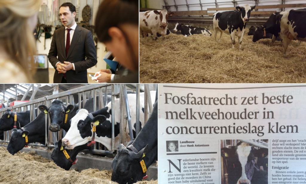 Nederlandse melkboer krijgt Dijksma's billenkoek van Van Dam