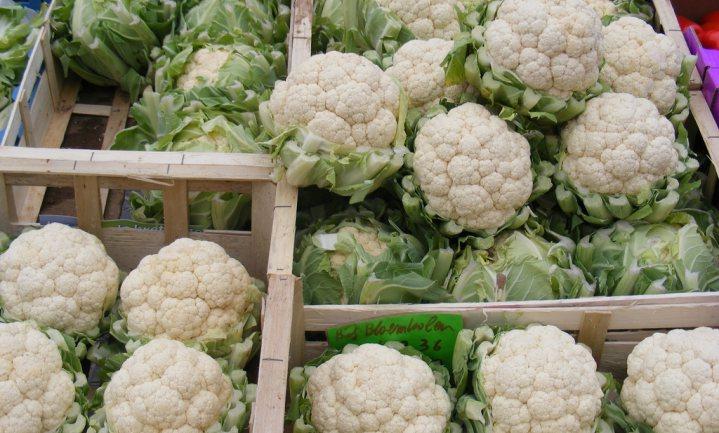 Bloemkool meest rendabele groenteteelt