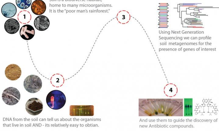Wetenschappers zoeken 'dirt' voor medicijnen