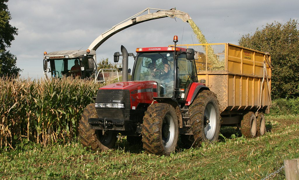 Sociale media maken Britse boer populair