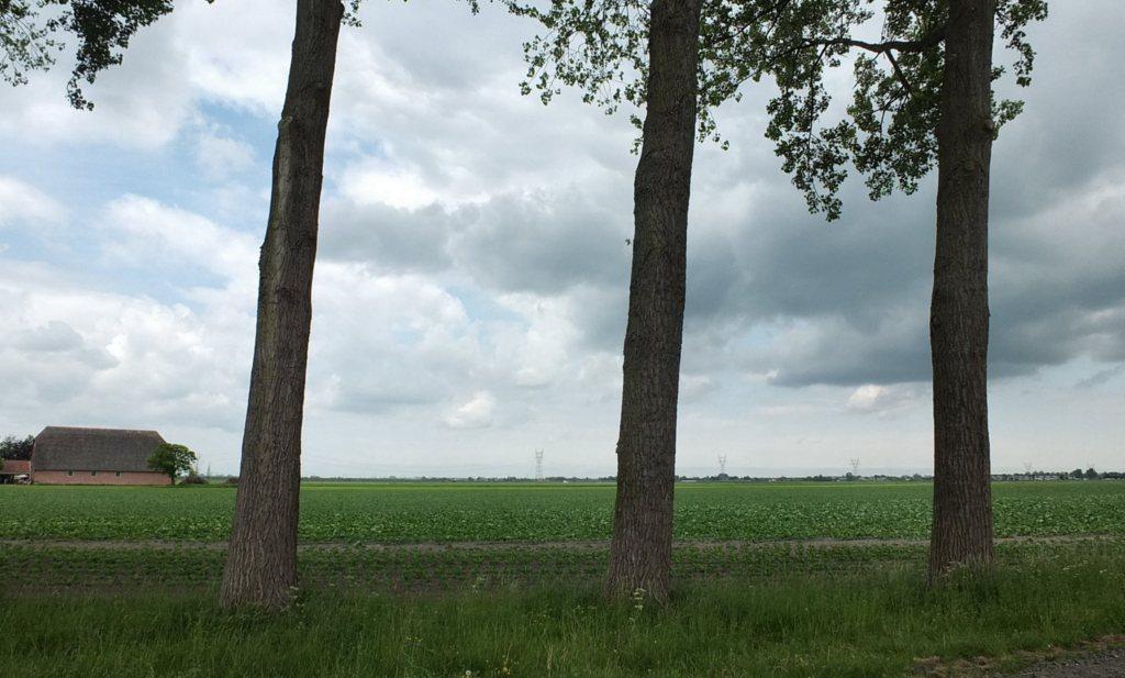 PBL waarschuwt kabinet: generiek stikstofbeleid zinloos voor boeren