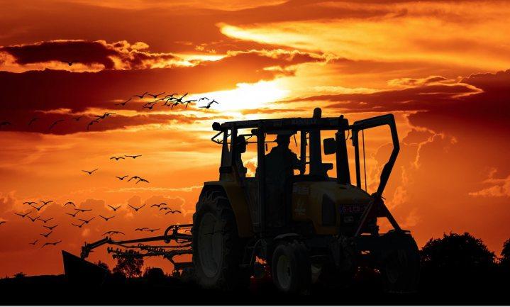 Boeren weten wat winst en verlies is