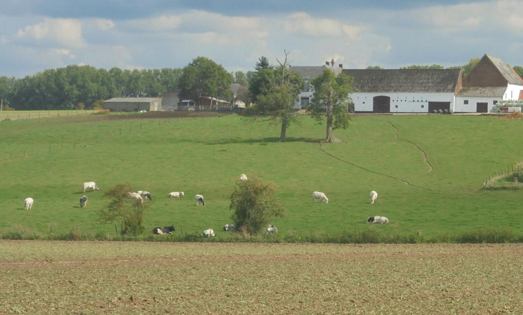 Robuust landbouwbeleid verzet zich tegen kwalijke liberalisering