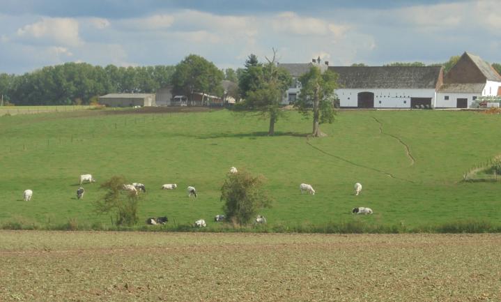 €43 miljard minder voor Europees landbouwbudget