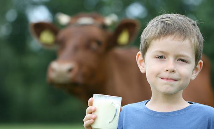 '€10 miljard steun voor jonge boeren is weggegooid geld'