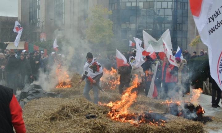 Drie landen lanceren 'Warschau-statement' tegen boerencrisis EU