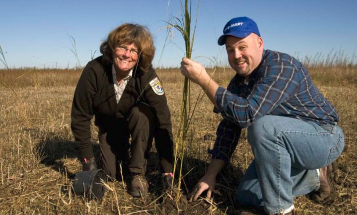Bomen planten kan het klimaat ook schaden