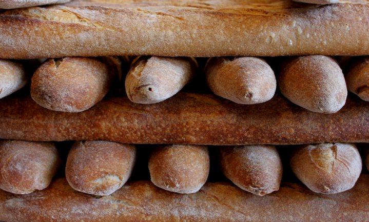 Nieuwe tarwe groeit op oud brood