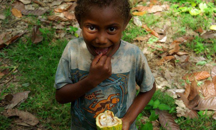 Amerikaanse cacaomultinationals toch niet aansprakelijk voor kinderslavernij in West-Afrika