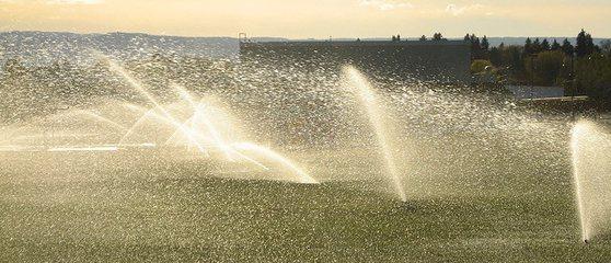 Waterbesparende maatregelen in Californië