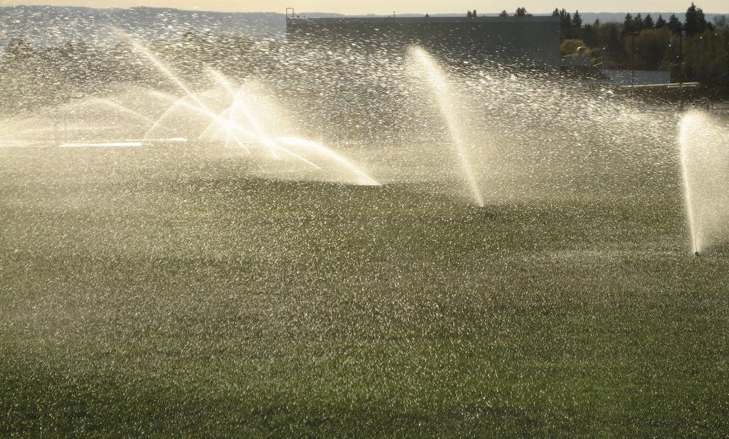 Nog te weinig boetes voor Californische waterverspillers