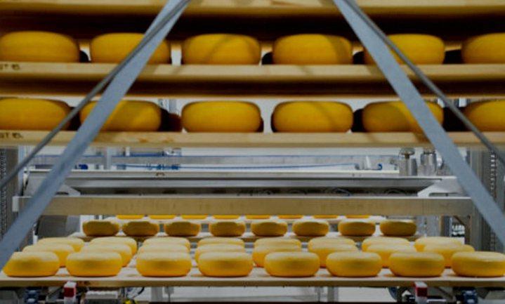 Uit melk komt kaas en plastic