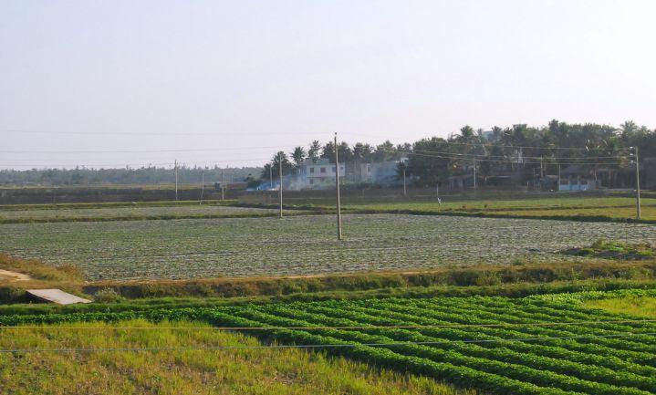 China breidt landbouwareaal in eigen land uit