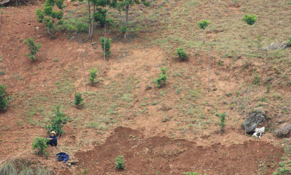 Landbouw en kunstmest drogen China uit