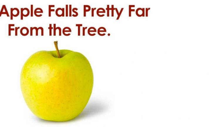 De (aard)appelkwestie