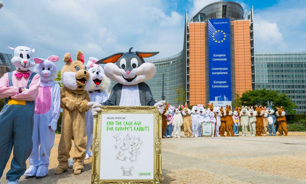 600.000 handtekeningen voor konijnenwelzijn