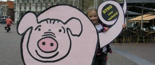 Onverwacht goede vooruitzichten voor prijs Nederlands varken