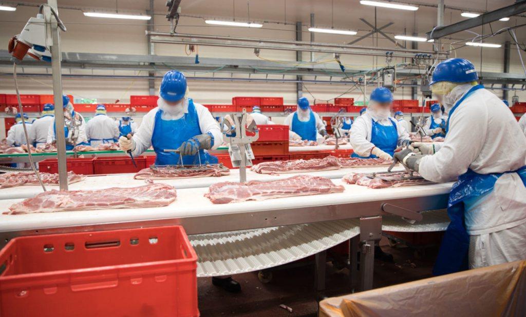 Duitse varkensslacht in het nauw en sociale onthouding vóór Kerst