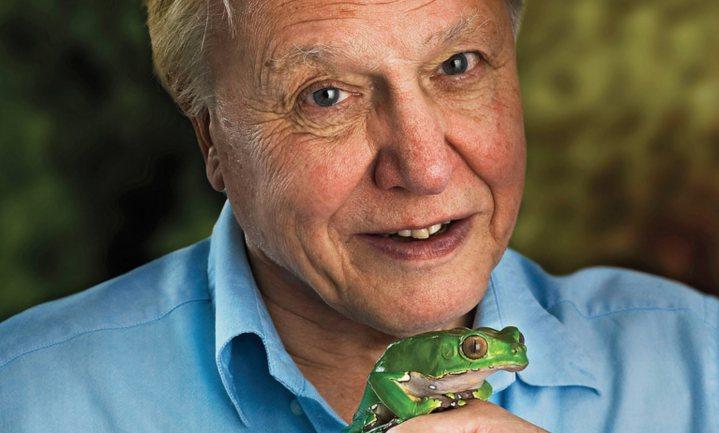 David Attenborough wil ondanks jongste WNF-rapport geen alarmist zijn