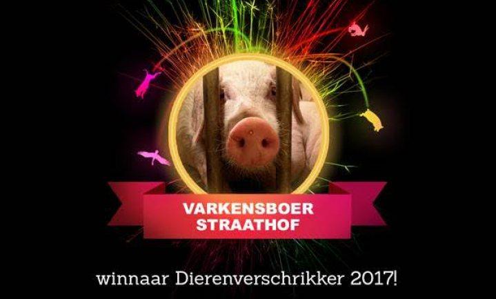 Dier&Recht roept varkenshouder Straathof uit tot 'Dierenverschrikker van het jaar'
