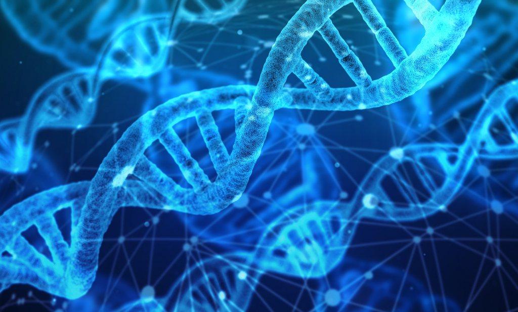 Met GMO-bacteriesporen de oorsprong van pathogenen in voedsel traceren