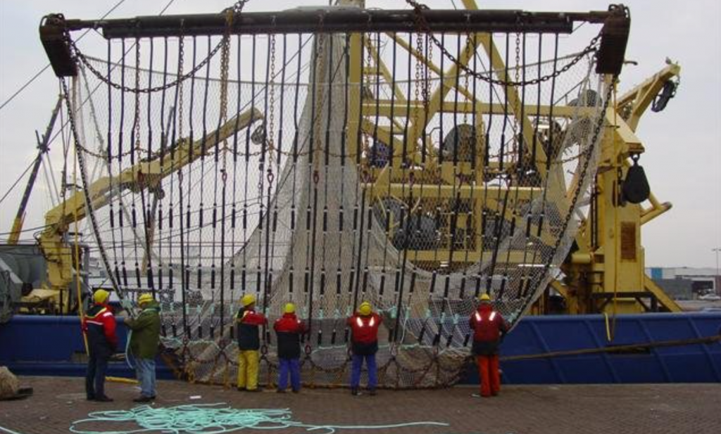 Rechter schuift wetenschap opzij, doek voor Nederlandse pulsvisserij definitief gevallen