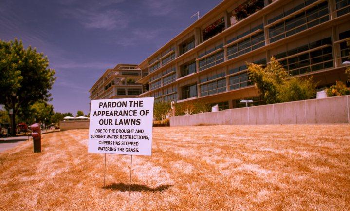 In Californië 'gaat droogte nooit meer over'