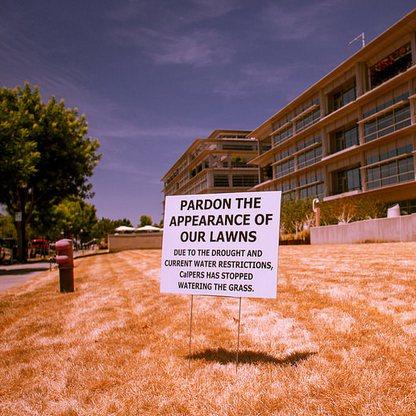 Californië gaat officieel 4e droogtejaar in