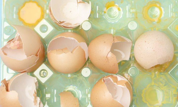 Belgische justitie doet inval bij voedselautoriteit om fipronil-crisis