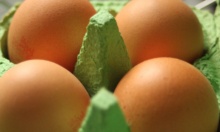 Italianen vinden Roemeense eieren met fipronil