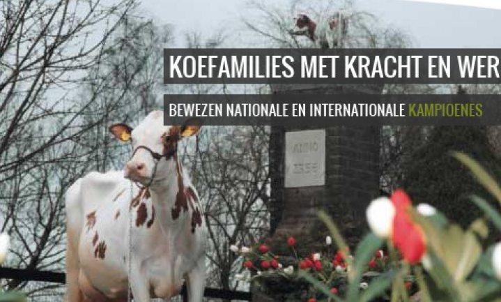 De oudste boerenfamilie van Nederland: sinds 1593