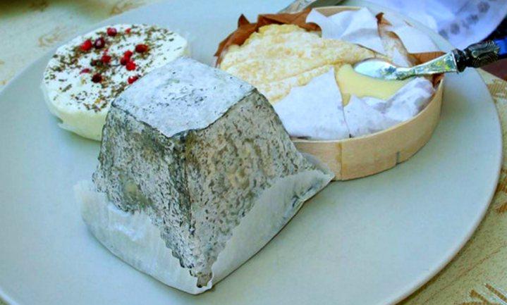 Kaas mogelijk missing link in 'French Paradox'