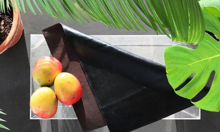 Fruit is het nieuwe nepleer