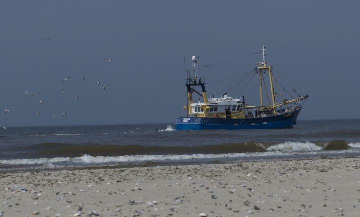 Kottervisserij boekt 'historisch hoog' resultaat
