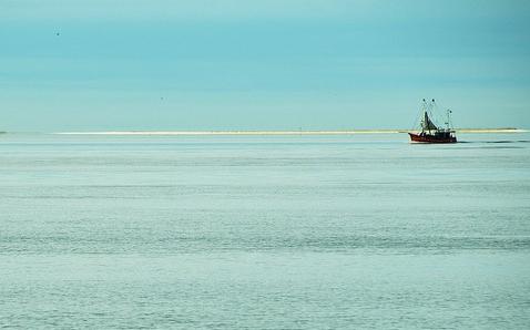 'Overbevissing, een kwestie van mismanagement'